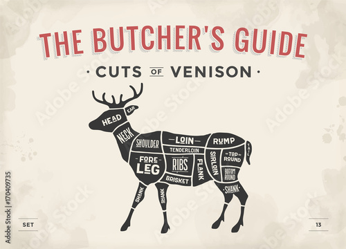 cut of meat set poster butcher diagram scheme venison vintage rh stock adobe com venison meat cuts diagram venison meat cuts diagram