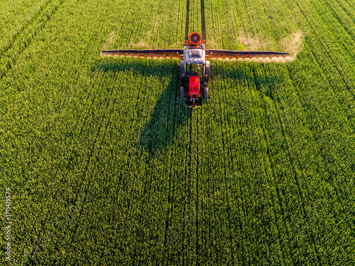 Fotomural Farmer spraying green wheat field