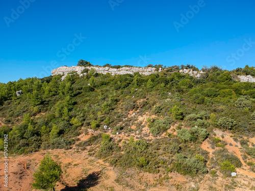 Fotomural Paysage de garrigue dans le sud de la France