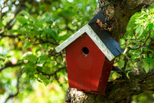 Red Wooden Nesting Box Or Bird...