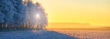 Winter In East Frisia