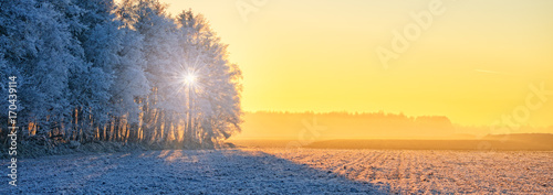 Photo sur Toile Jaune de seuffre Winter in East Frisia