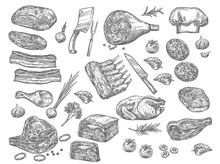 Vector Sketch Icons Of Meat Fo...