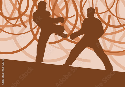 Fotografie, Obraz  Taekwondo fight man vector abstract