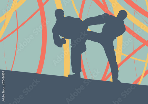 Obraz na plátně  Taekwondo fight man vector abstract