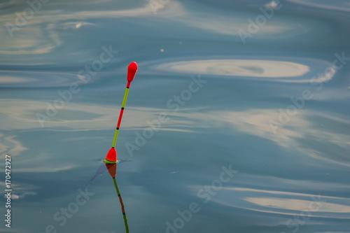 Fotobehang Vissen Поплавок на озере.