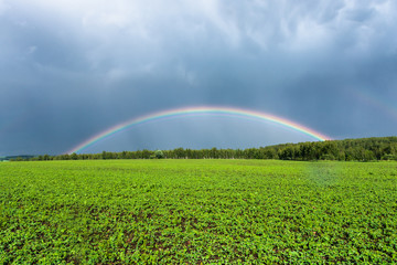 double rainbow in the blue cloudy dramatic sky over green field and a forest illuminated by the sun in the country side