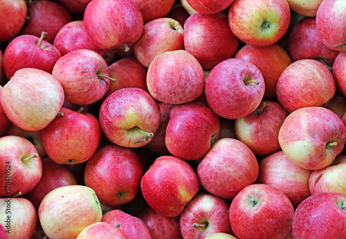 red-apples-ready-to-be-eaten