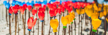 BANNER Flowers Made From A Plastic Bottle. Plastic Bottle Recycled. Waste Recycling Concept Long Format
