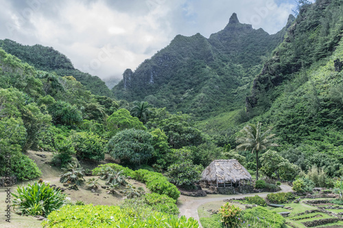 Grass hut, lush mountains, beautiful tropical garden, at the ...