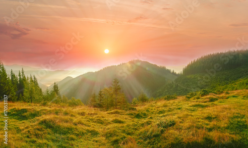 Canvas Prints Honey Carpathian landscape with mountain meadow in the foreground at sunrise