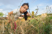 Brave Young Girl Observing A Huge Spider. Curiosity And Fear Concept.