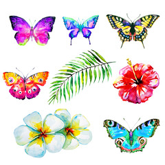 beautiful set of flawers and butterflies, watercolor,isolated on a white