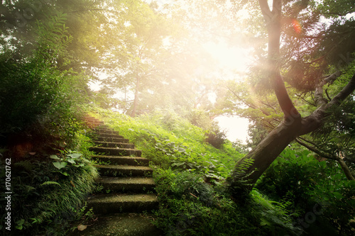 Tuinposter Beige art beautiful peaceful Landscape; path in the old park