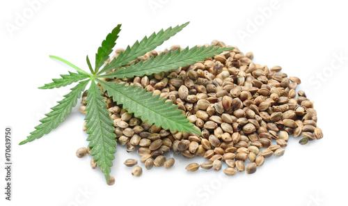 Obraz Heap of hemp seeds on white background - fototapety do salonu