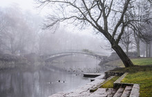 Sentimental Park