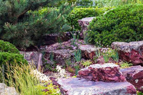 Aluminium Prints Garden Stones for the alpine slide, house garden landscaping design. Plants and rocks in landscape background