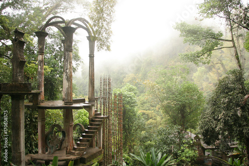Poster Olive Las Pozas, a surrealist botanical garden in Xilitla Mexico by Edward James