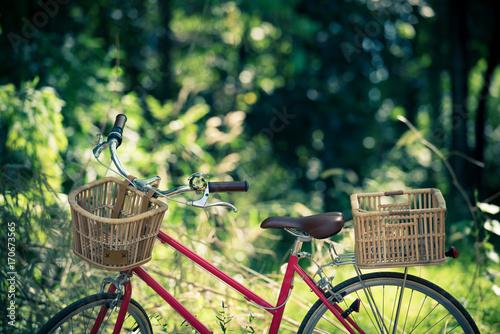 Türaufkleber Fahrrad beautiful landscape image with Bicycle
