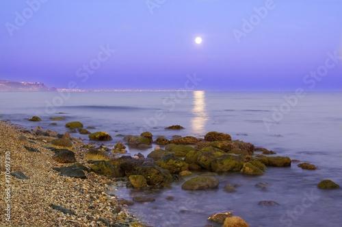 Poster Natuur Luna llena reflejada en el mar