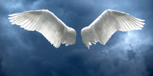Angel Wings With Stormy Sky Ba...