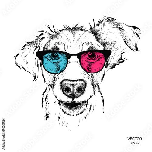 Photo sur Toile Croquis dessinés à la main des animaux Portrait of the pug in the colored glasses. Vector illustration.