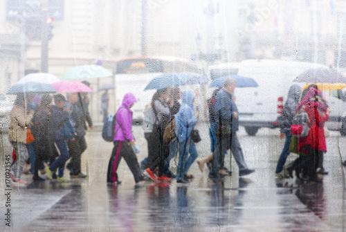 Cuadros en Lienzo People crossing road during the rain