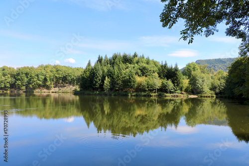 Fototapeten Forest river Plateau der 1000 Seen, Franche-Comte, Frankreich
