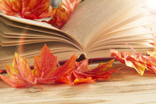 An Open Book With Old Autumn Fallen Leaves. Vintage Still Life With Red Maple Leaves And A Notebook On The Boards.