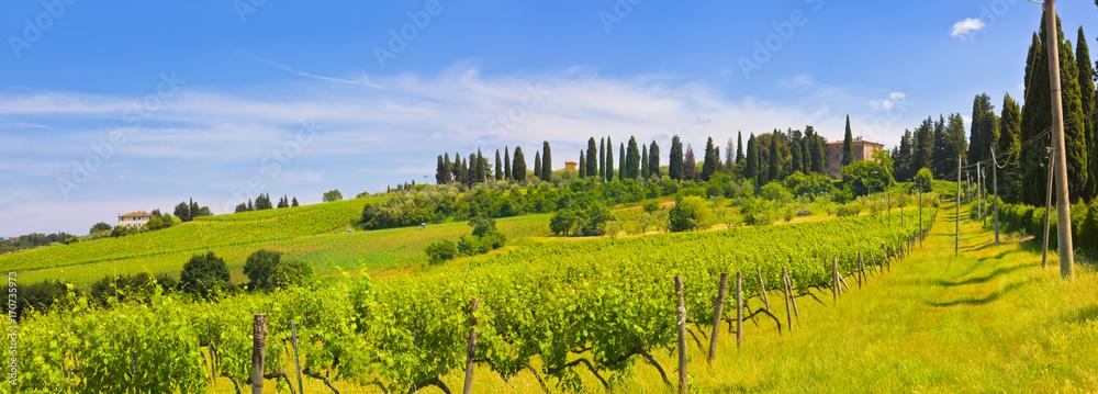 Toskana-Panorama, bei Montespertoli