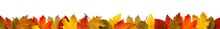 Bunte Herbstblätter - Bordür...