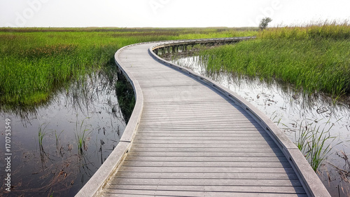 Boardwalk Through Marsh in Sabine National Wildlife Refuge in Louisiana Wallpaper Mural