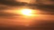 Birds flies to sunlight in foggy sky
