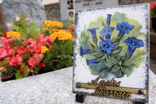 Plaque Commémorative. Bleuets...