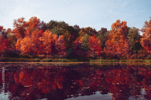Aluminium Prints Autumn Autumn . Fall scene. Beautiful Autumnal park. Beauty nature scene. Autumn landscape, Trees and Leaves, Reflection on the water