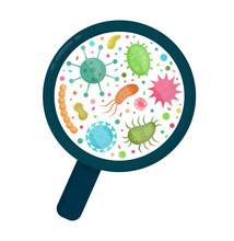 Bacterial Microorganism In A C...