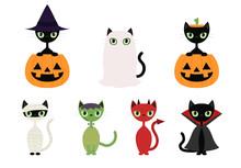 Black Cats In Halloween Costumes