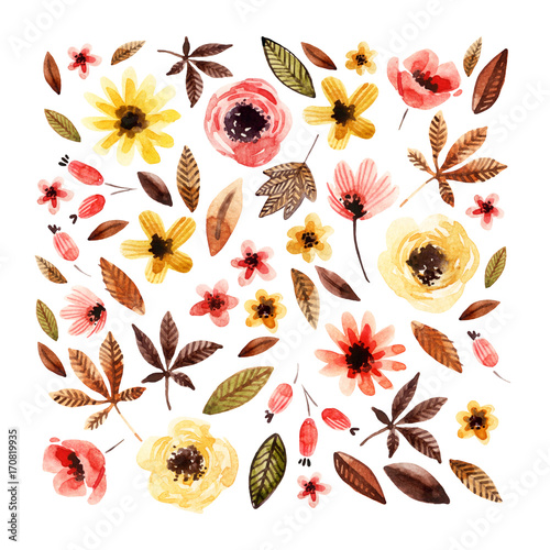 Cotton fabric Watercolor floral elements isolated on white background.