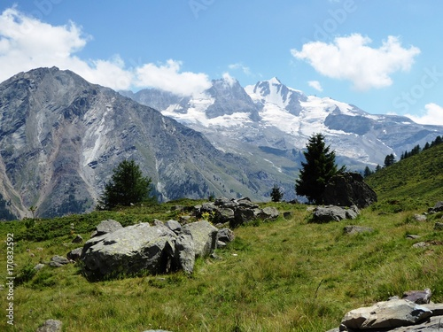Fotografia, Obraz  Grand Paradis vu d'Orvieille, Valsavarenche