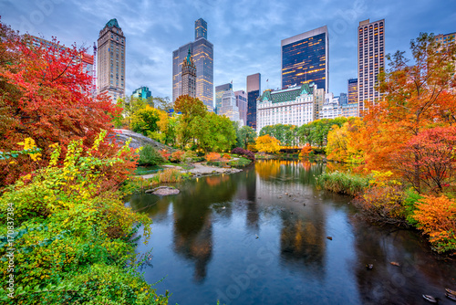 Central Park Autumn in New York City Canvas Print
