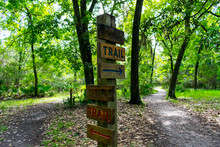 Wooden Trail Sign Where The Nature Path Splits Into Two Seen While Hiking On A Hot Summer Morning