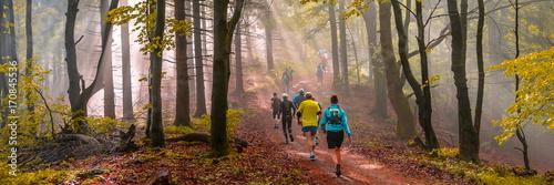 Poster de jardin Gris traffic Joggen im Herbst, stimmungsvolles Waldpanorama