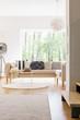 Comfortable sofa and designed lamp