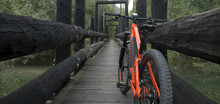 Panorama: Ebike E-bike Electric Bicycle Orange, Leaning On An Old Dark Wooden Bridge, Nestled In The Woods, Under Which Flows A Small Light Green Mountain River, Ossola, Alps, Italy