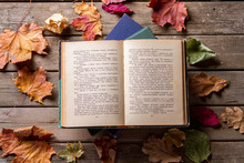 Open Book Autumn Leaves