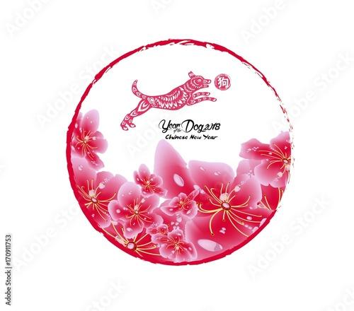 Sakura Flowers Background Cherry Blossom Isolated White Chinese New Year Hieroglyph