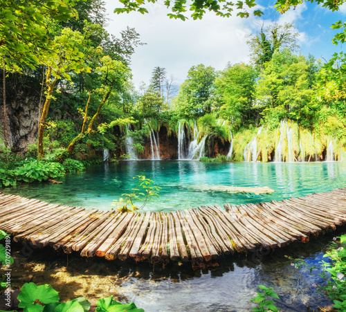 Poster Landscapes A photo of fishes swimming in a lake, taken in the national park Plitvice Croatia