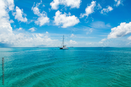 Fototapeta Beautiful landscape with luxury sail catamaran on the clear turquoise water of I
