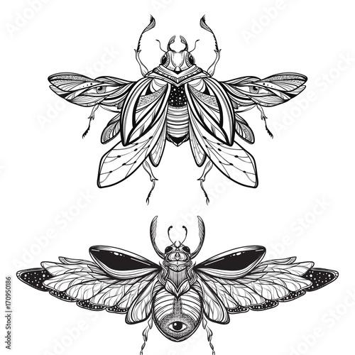 Fototapeta Beetle Bug Tattoo Drawing Scarab Bug Illustration