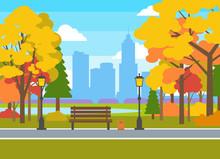 Beautiful Autumn City Park Landscape